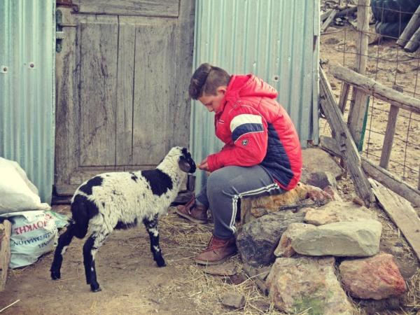 παιδί με κατσίκα στην Λήμνο