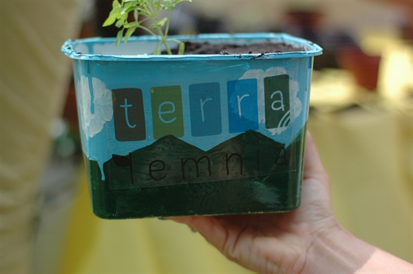 terra-lemnia-project-case