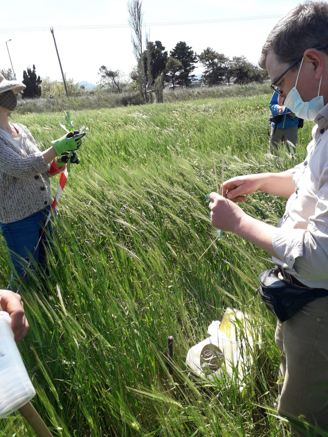Biodiversity monitoring Spring 2021