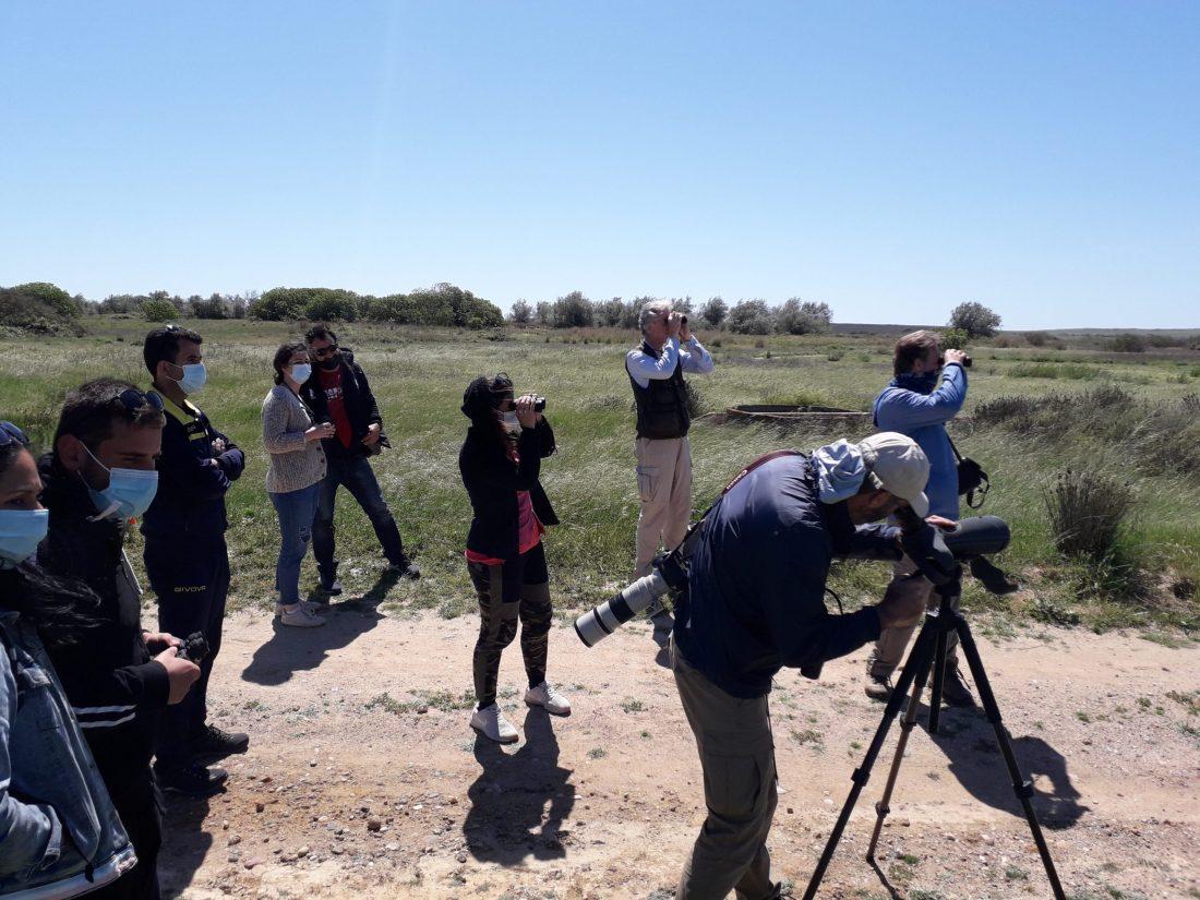 Birdwatching Chortarolimni (7)